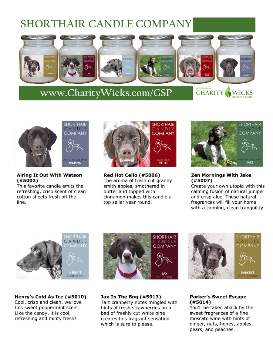 German Shorthair Pointer Rescue of NJ-Charity Wicks Order Form Back Template w-6